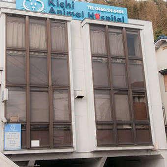 きち動物病院