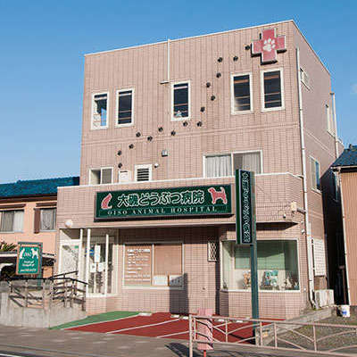 大磯動物病院