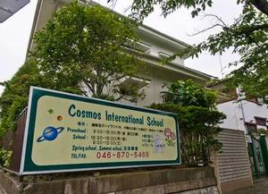 Cosmos International School