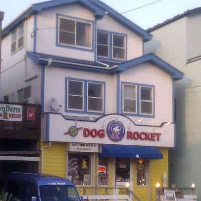 DOG ROCKET