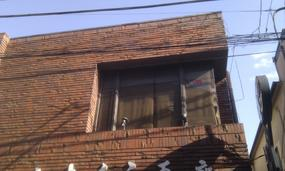 Gallery Shin