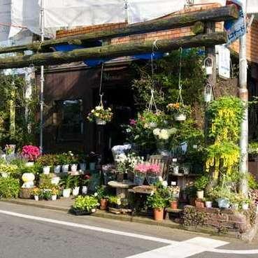 Hanae Flower Shop