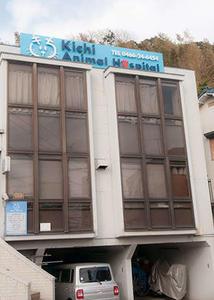 Kichi Animal Hospital