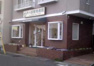 Noppo Veterinary Clinic