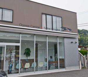 Ogawa Dog and Cat Hospital