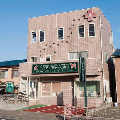 Oiso Animal Hospital