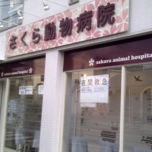 Sakura Veterinary Clinic