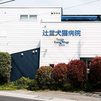 Tsujido Dog&Cat Clinic