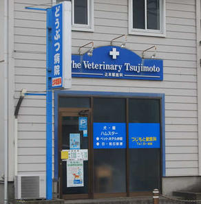 The Veterinary Tsujimoto
