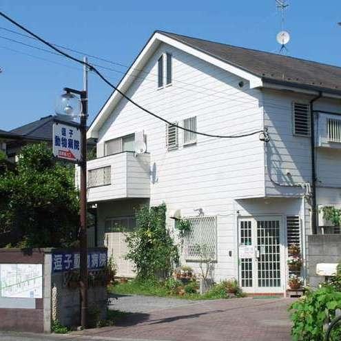 Zushi Animal Hospital